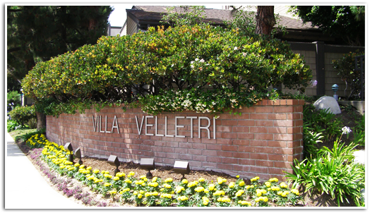 Villa Velletri Market Update – Recent Sales and Active Listings at Villa Velletri in Marina del Rey