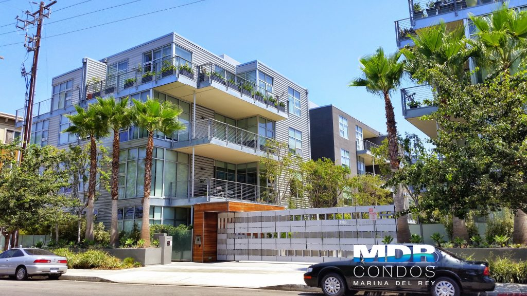 Gallery Lofts Market Update | Recent Sales & Listings