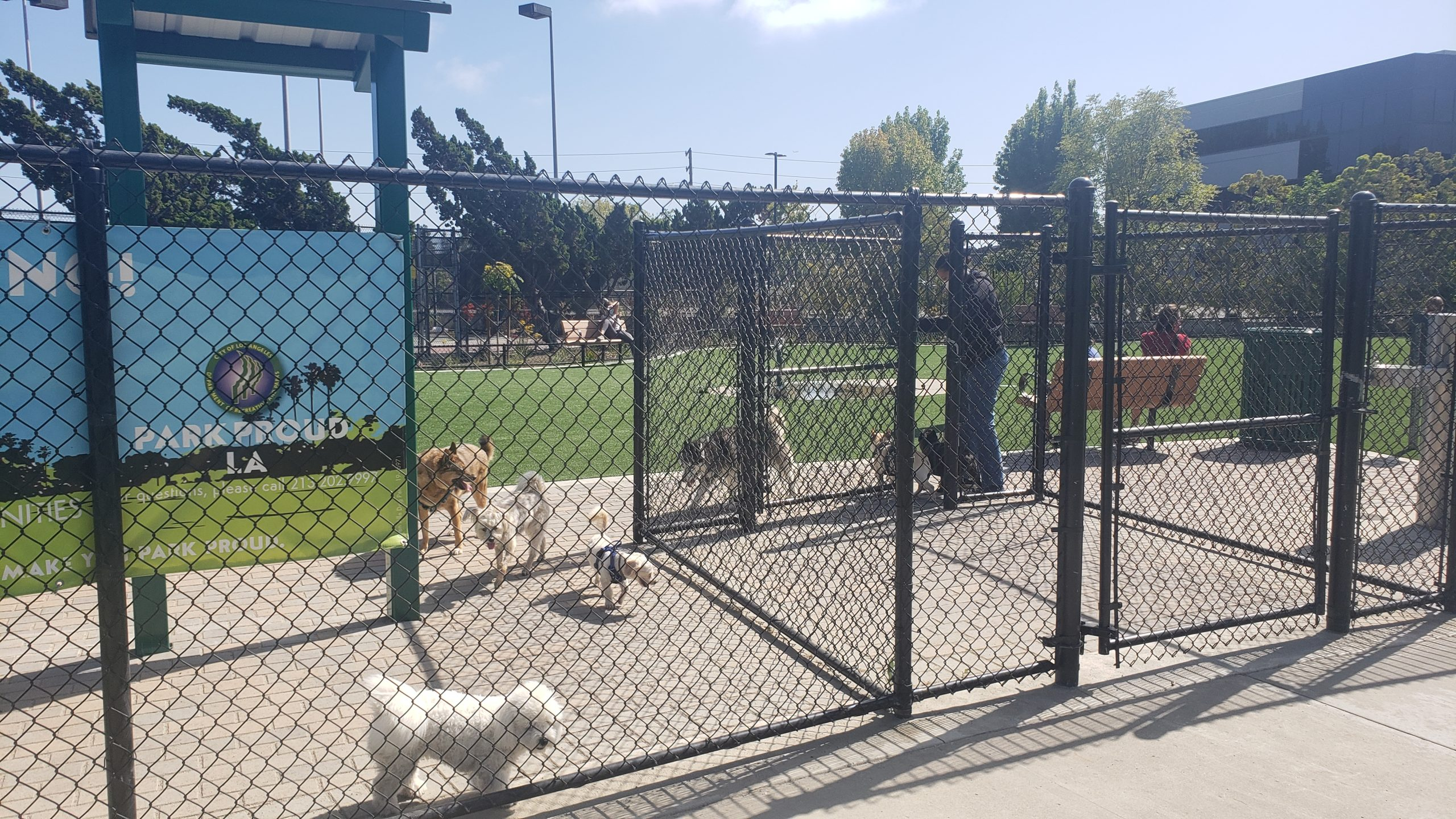 Buy the Perfect Condo for your Dog in Marina del Rey