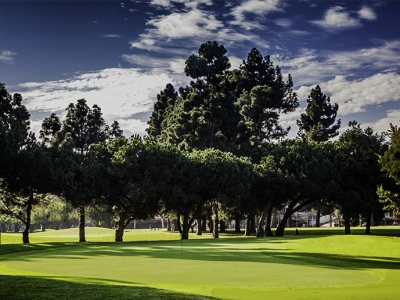 Where to Golf Locally
